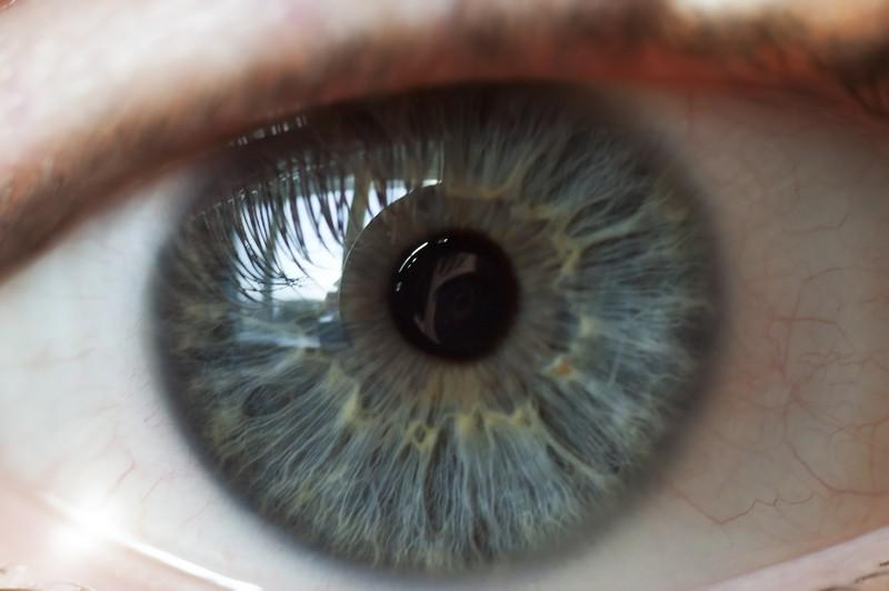 Digital Retina Imaging Mt Airy, MD